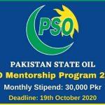 PSO Mentorship Program 2020