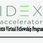 IDEX Fellowship Program January 2021